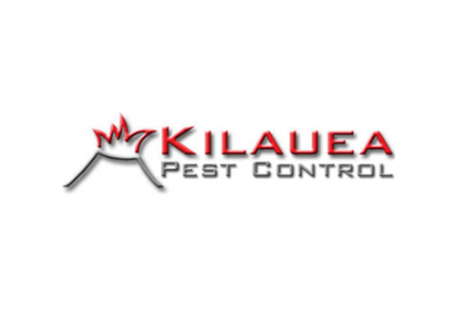 Kilauea Pest The U Group